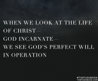 When we look at the life of Christ - God incarnate - we see God's perfect will in operation.
